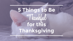 5 Things to be Thankful for this Thanksgiving