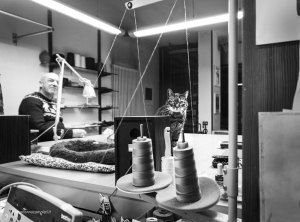 "Dressmaking shop cat Pepe | ""C-AT WORK"" by Marianna Zampieri"