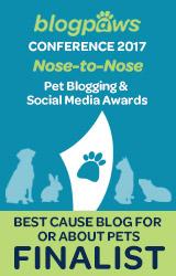 Best Cause Blog Finalist