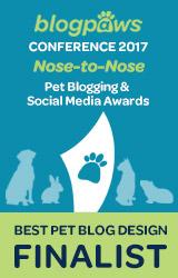 Best Pet Blog Design Finalist