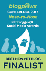 Best New Pet Blog Finalist