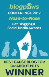 Best Cause Blog 2017
