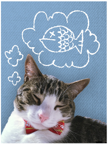 gray and white tabby cat dreaming of fish