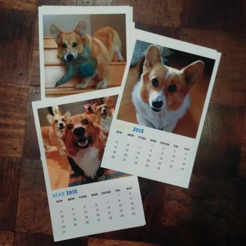 Corgi Calendar 2015