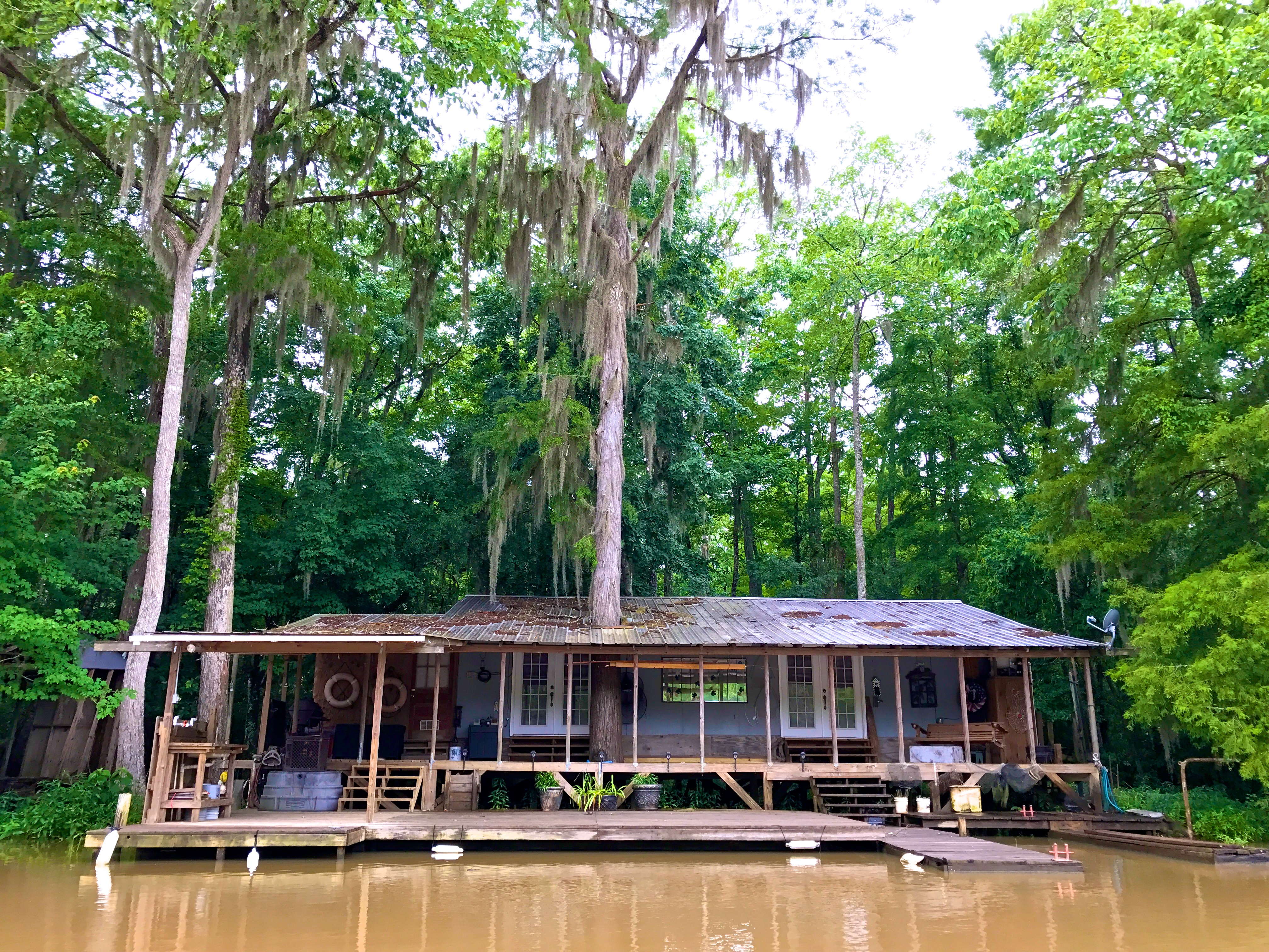 A house on the river with a tree growing through it
