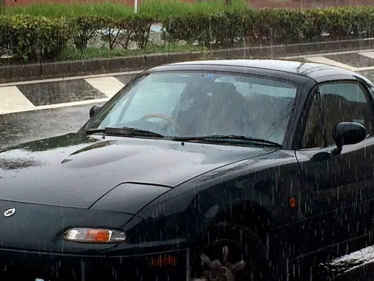 久々の雨です!