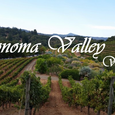 Sonoma Valley Wineries