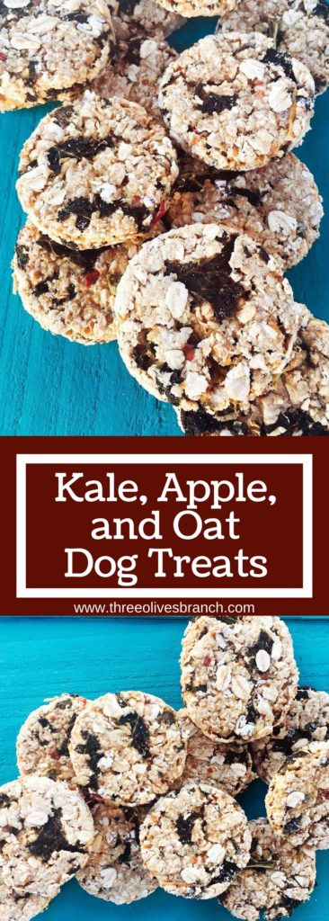 Kale, Apple, and Oat Dog Treats are a great healthy alternative for your pet! Simple to make and full of quality ingredients unlike many store brands | Three Olives Branch