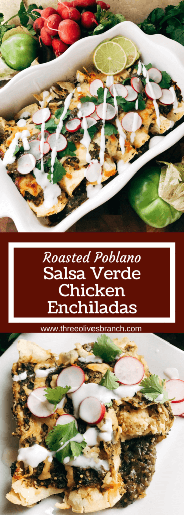 Tangy and flavorful, these enchiladas will be a house favorite! Stuff with cheese, vegetables, or chicken. Perfect for leftover chicken, and the sauce can be made ahead for faster assembly. Vegetarian friendly, kid friendly, and full of fresh and bright flavors. Roasted tomatillos, poblano peppers, onion, and garlic make the perfect enchilada sauce or salsa. Roasted Poblano Salsa Verde Chicken Enchiladas | Three Olives Branch | www.threeolivesbranch.com