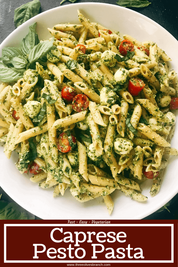 Less than 25 minutes to make this fresh basil pesto pasta with cherry tomatoes and fresh mozzarella cheese. A quick and simple Italian pasta recipe highlighting fresh caprese flavors. Vegetarian recipe but add chicken or sausage for the meat lovers. Featuring Barilla ProteinPLUS pasta, this dinner recipe is nutritious and hearty, packed with protein, fiber, and Omega-3. Pesto Caprese Penne Pasta #pestopasta #pastasalad #caprese