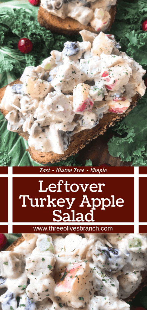 Ready in 10 minutes, Leftover Turkey Apple Salad recipe is a great gluten free way to use up Thanksgiving turkey leftovers. Simple and fast to make, turkey is mixed with apple, dried cranberries, sage, and some gravy in a mayonnaise mixture. #thanksgivingleftovers #thanksgivingrecipes #turkeyrecipes #turkeyleftovers #glutenfree