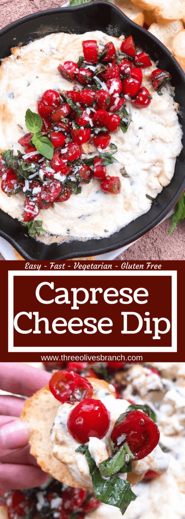Caprese Cheese Dip is a fast and simple vegetarian Italian appetizer recipe. Three cheeses (mozzarella, cream cheese, Parmesan) are melted with seasonings and topped with fresh tomatoes, fresh basil, and balsamic vinegar. #cheesedip #caprese #italianrecipe