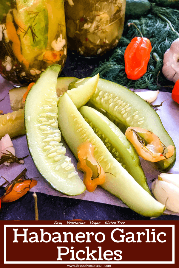 These homemade spicy pickles are easy to make! A dill pickle with a hint of garlic and a spicy pepper kick, these Homemade Habanero Garlic Pickles are vegan, vegetarian, gluten free, and dairy free. Cut the cucumbers in any shape you prefer. #homemadepickles #spicypickles