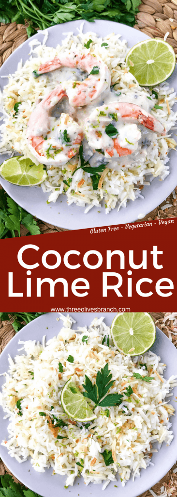 Coconut Lime Rice is a tropical side dish recipe made with coconut milk, toasted coconut flakes, and fresh lime. Vegan, vegetarian, and gluten free. Also can be made in a rice cooker or Instant Pot. #coconutrice #coconutlime #ricerecipes