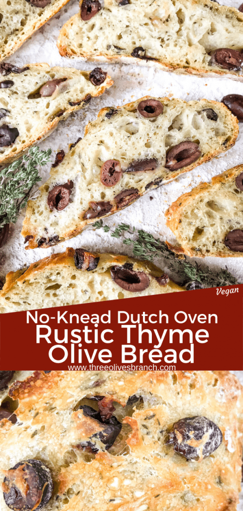 Dutch Oven No Knead Rustic Thyme Olive Bread recipe is a homemade bread filled with kalamata olives and thyme (or rosemary). Simple to make Italian bread. #homemadebread #olivebread #dutchovenbread #nokneadbread