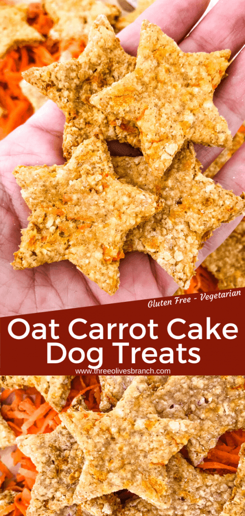 Oat Carrot Cake Dog Treats recipe are filled with carrots and carrot cake spices. An easy homemade dog treat made with oats and no flour (gluten free). Makes soft or crunchy treats. #homemadedogtreats #diydogtreats #carrotdogtreats