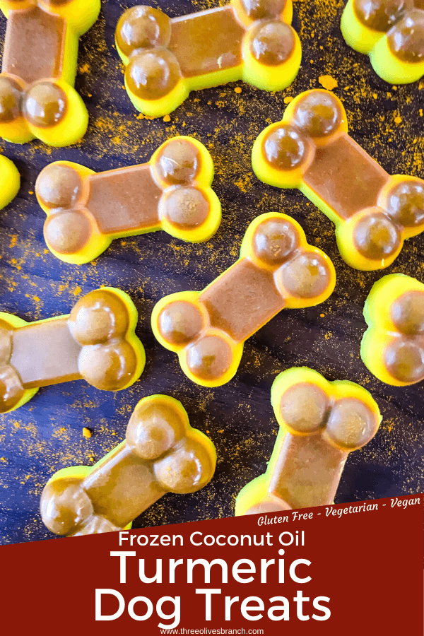 Pin image of Frozen Turmeric Coconut Dog Treats with title at bottom