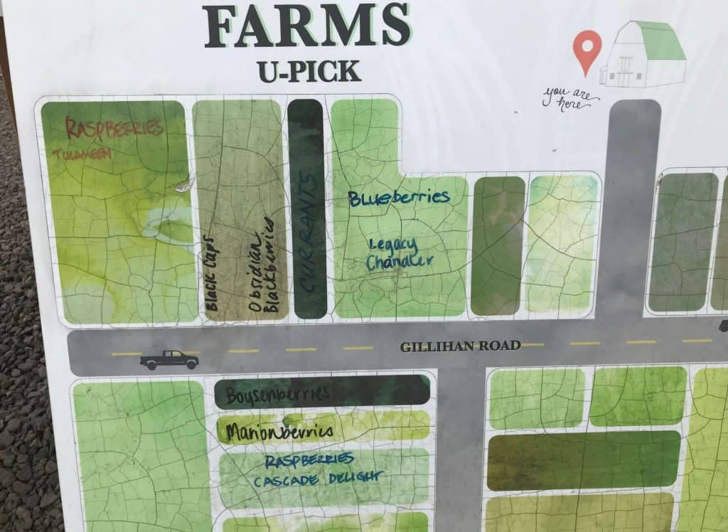 A berry farm map for Berry Picking in the Pacific Northwest (Sauvie Island, Portland, Oregon)