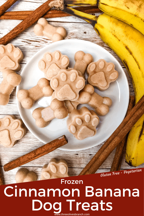 Pin image of Frozen Cinnamon Banana Dog Treats with title at bottom