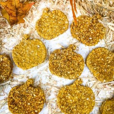 Grain Free Oatmeal Pumpkin Dog Treats