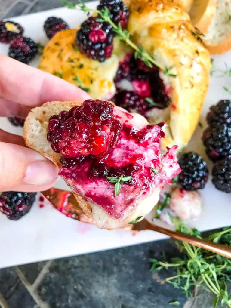 A hand holding a crostini topped with cheese and berries