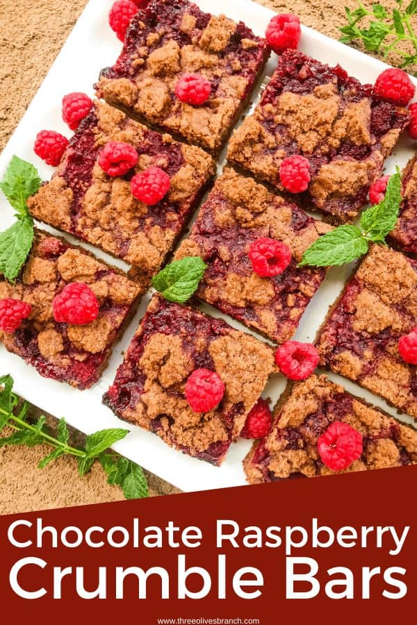 Pin image for Chocolate Raspberry Crumble Bars on a white tray with the title at the bottom