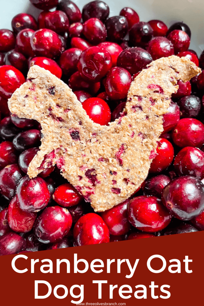 Pin image of a cranberry dog treat in a bowl of fresh cranberries with the title at bottom