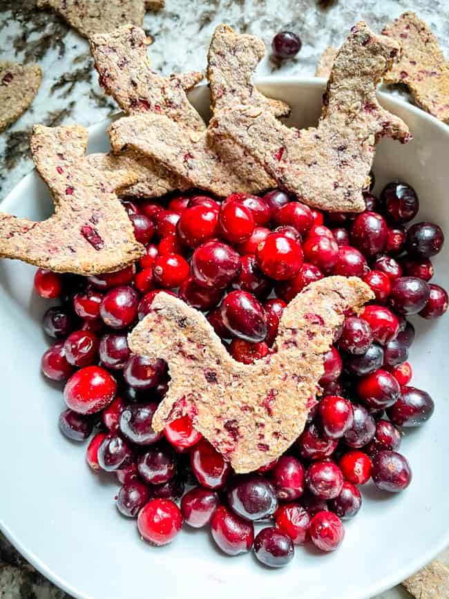 Several Honey, Oat, and Cranberry Dog Treats in a bowl with fresh cranberries