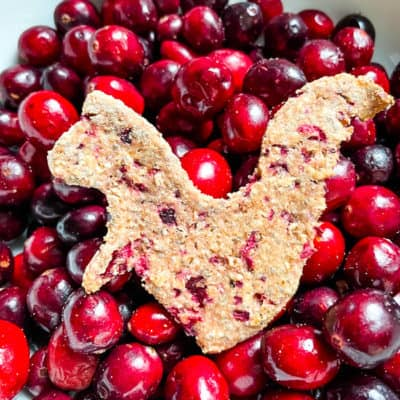 Honey, Oat, and Cranberry Dog Treats