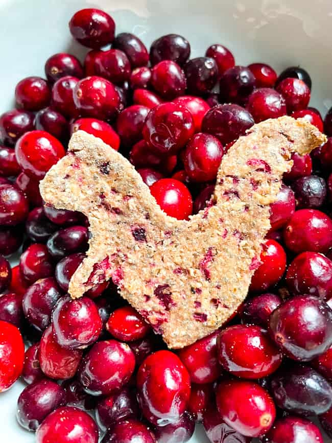 A Cranberry Dog Treat shaped like a squirrel sitting in a bowl of fresh cranberries