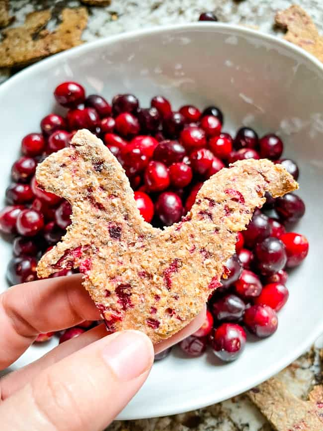 A hand holding a treat above a bowl of cranberries
