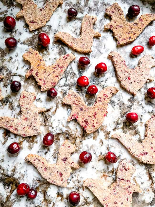 Honey, Oat, and Cranberry Dog Treats scattered on a granite counter with some fresh cranberries