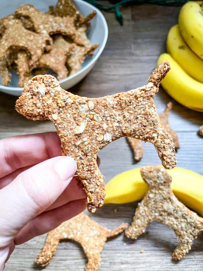 A hand holding a Banana Peanut Butter Dog Treats shaped like a dog