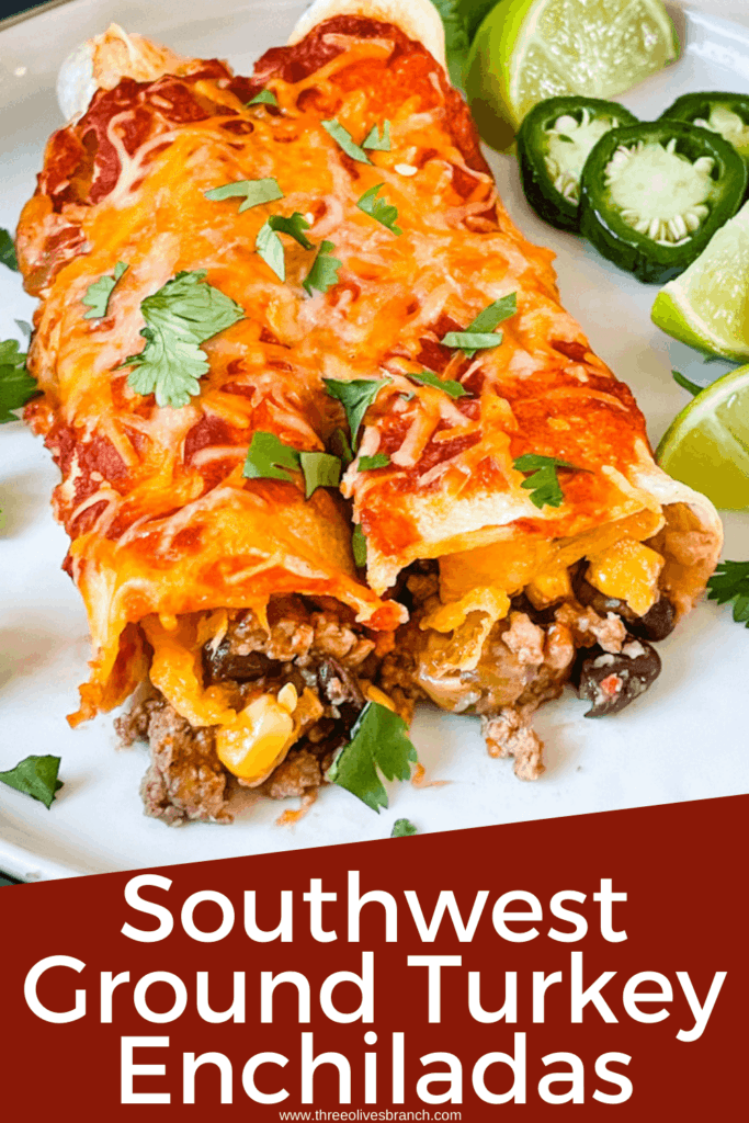 Pin image of two Southwest Ground Turkey Enchiladas on a plate with title at bottom