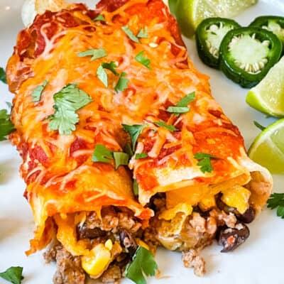 Southwest Ground Turkey Enchiladas