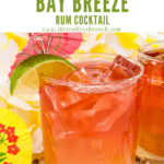 Pin image of red and orange Malibu Bay Breeze cocktail with title at top
