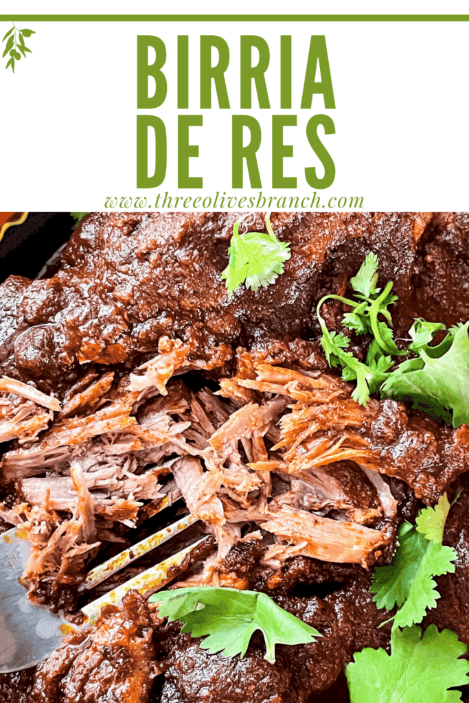 Pin image of some shredded Birria de Res with title at top