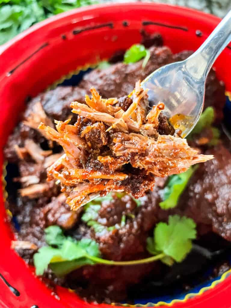 A fork holding some shredded beef above the bowl