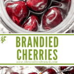 Long pin image for Brandied Cherries with title