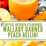Long pin of Copycat Outback Steakhouse Wallaby Darned Peach Cocktail with title