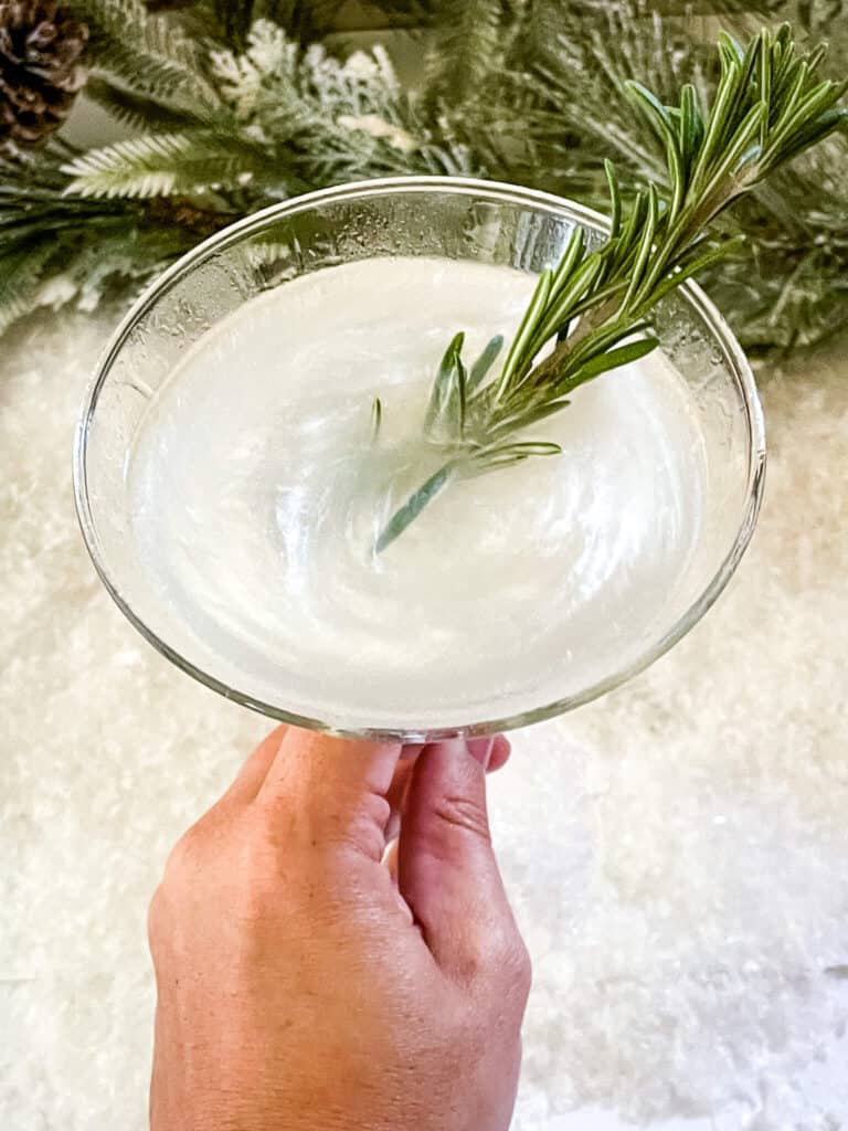 A hand holding a Frosted Pine Gibson Martini