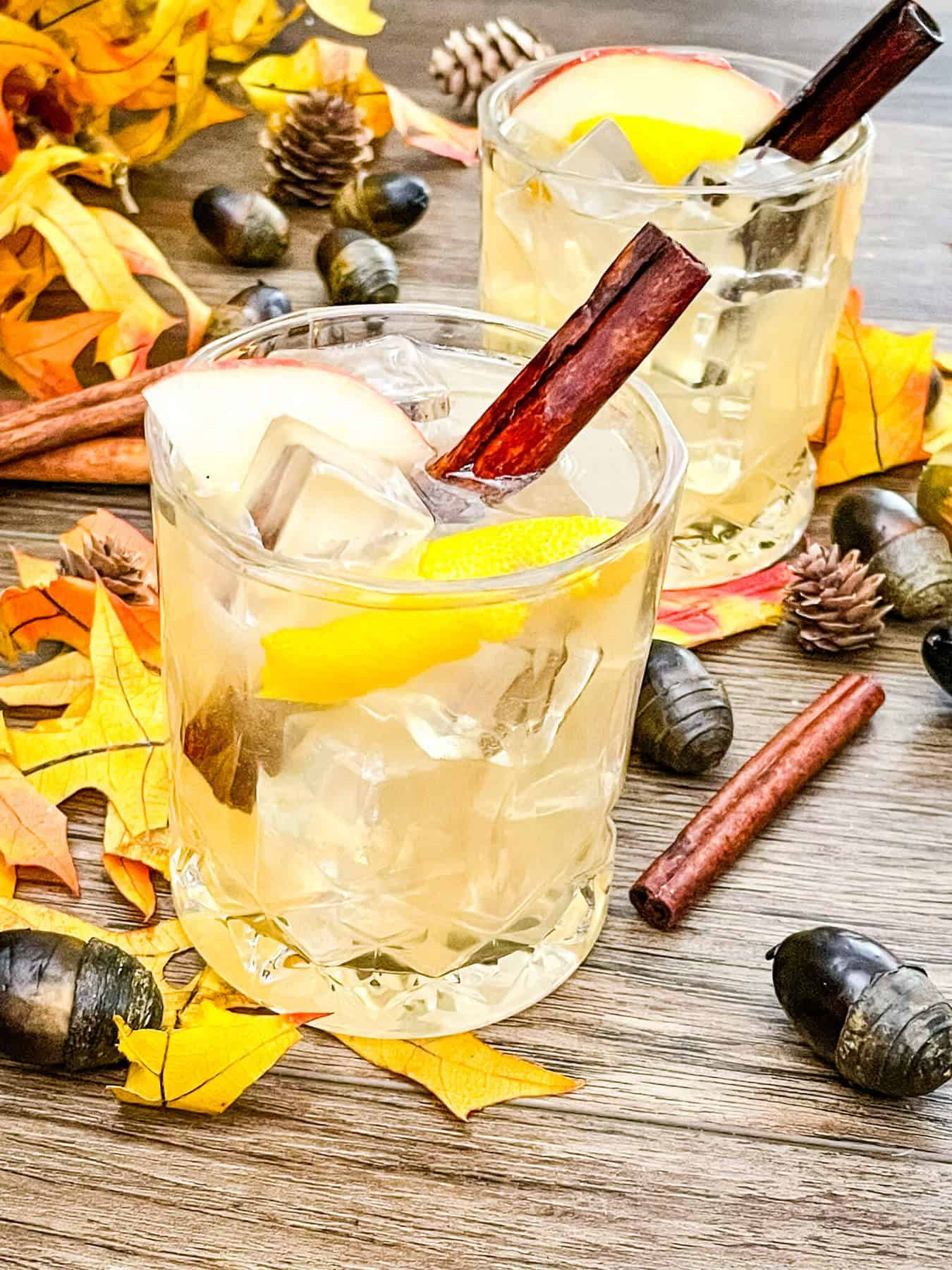 Fall cocktails with cinnamon and leaves around them