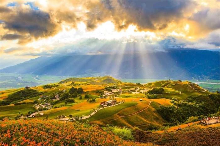 【花東三大金針花季】六十石山、赤科山、太麻里金針花活動、交通懶人包
