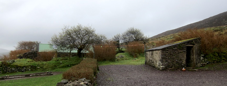 A view from our Irish Farmhouse