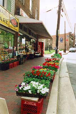 Flowers in front of old Yates Market Photo by Mike Hartley