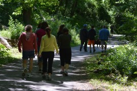 Our crew walking Photo by Mike Hartley