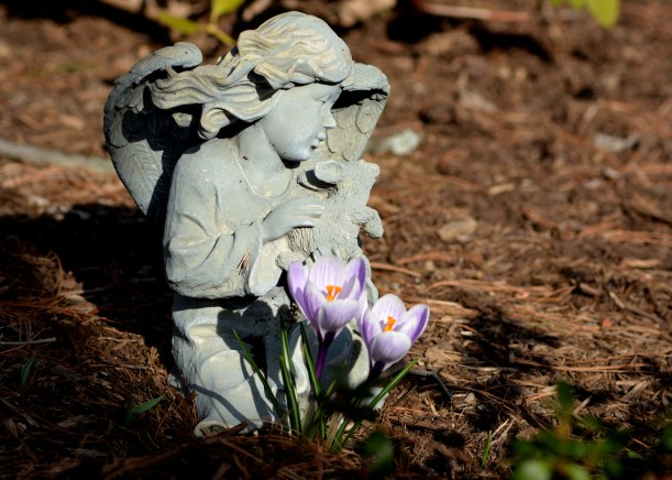 The garden ornament. I kind of liked the frog and rabbit we used to have. Photo by Mike Hartley