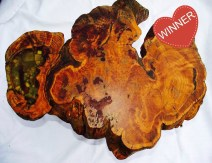 Burl coffee tables