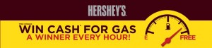 HERSHEY'S SUMMER 2013 GAS Instant Win Game