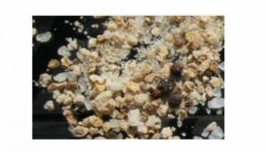 Free Gourmet Salt Samples